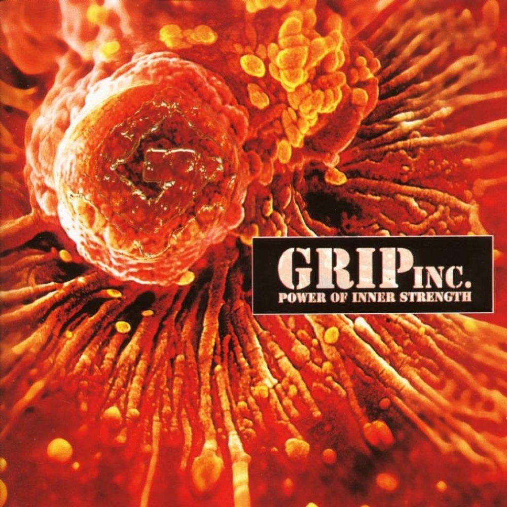 grip-inc-power-of-inner-strength